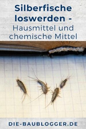 Silberfische loswerden - Hausmittel und chemische Mittel
