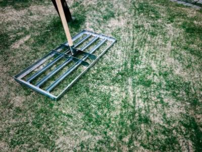 Rasen sanden mit Rakel